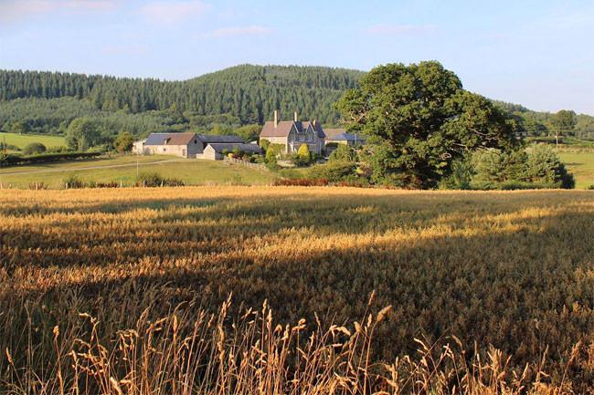 Wilde Lodge, Knighton