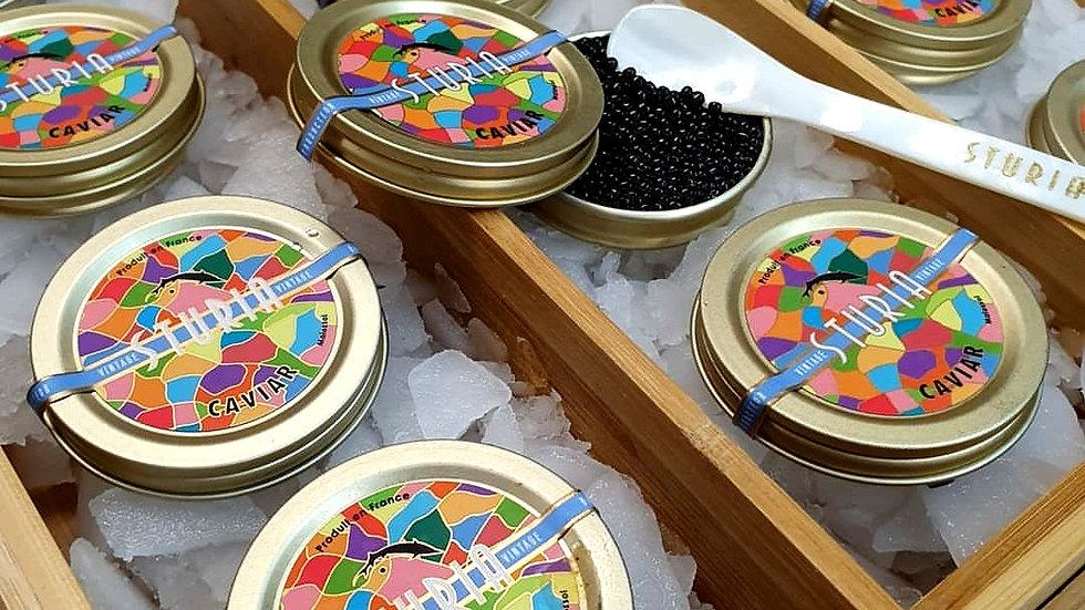Sturia Vintage Caviar Box