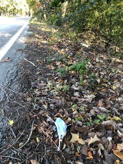 Roadside Trash