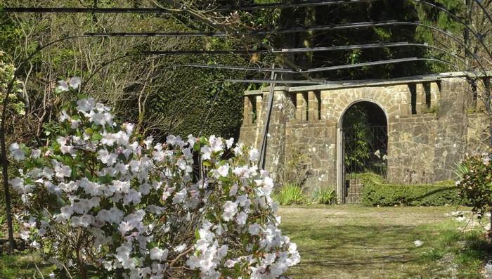 fintry gardens