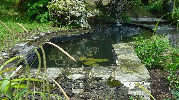 fintry pond