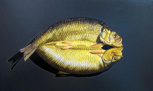 Kipper - 46x27 cm