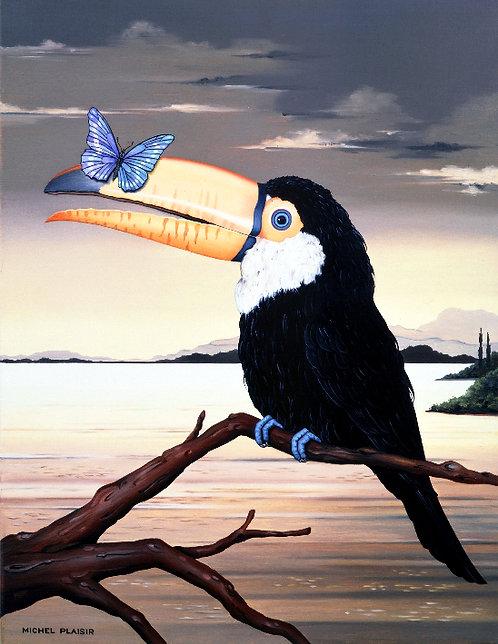 Michel PLAISIR : Le toucan au papillon bleu