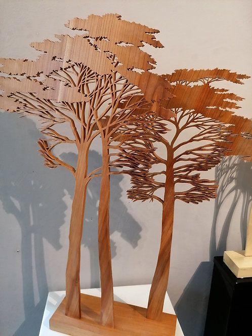 Pins de la Cigale  -  Hauteur 61 cm