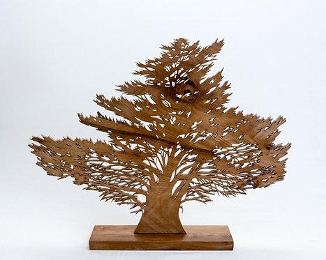 Le cyprès de Dahouet (Bretagne) - Largeur 53 cm