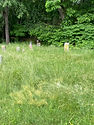 2021 - Hope Cemetery (Youngstown, PA)_3.jpg