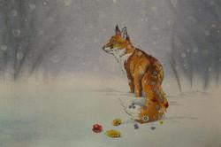 Colourville Fox
