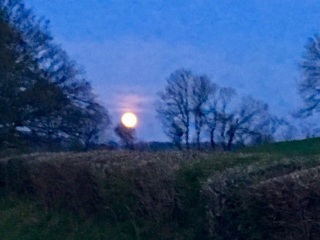 Pink Moon  19th April 2019