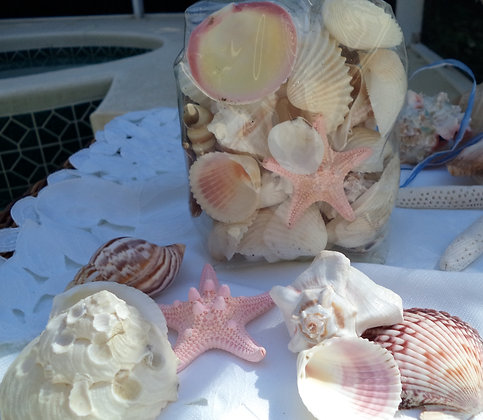 Table Scatters- Pastel Shells