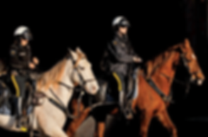 Mounted Security by Midstate Security and Investigations, Bushnell, Sumter County, Florida www.midstateagency.com