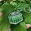 Thumbnail: Little Greenhouse - Transparent Keyring Charm