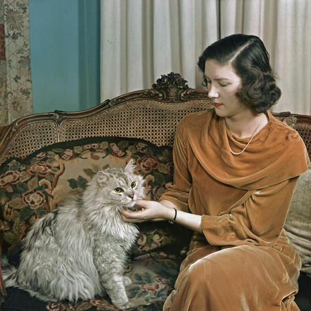 Photos That Prove Cats Have Always Ruled Over Humans