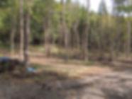 camp1-web.jpg