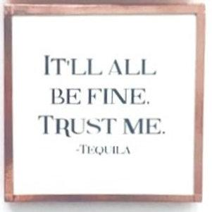 It Will All Be Fine, Trust Me