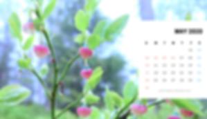 ◆北欧生活◆カレンダー2020年5月(パソコン用).png