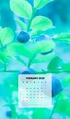 ◆北欧生活◆カレンダー(モバイル用)2020_08.png