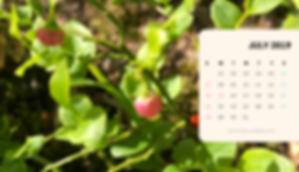 ◆北欧生活◆カレンダー2019年7月(パソコン用).png