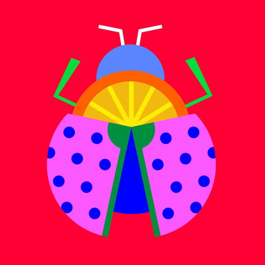 fresh beetle