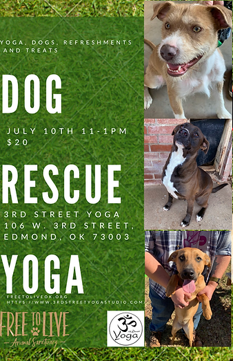 Dog Adoption Yoga (1).png