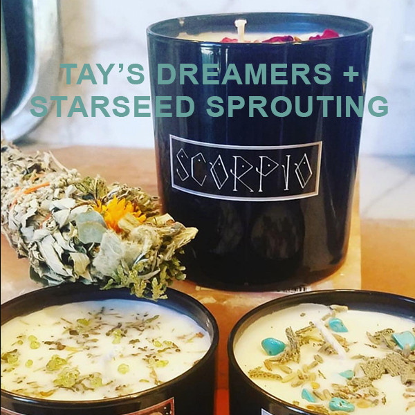 Starseed Sprouting / Tay's Dreamers Collab