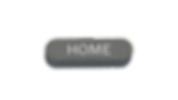 Website home button.png