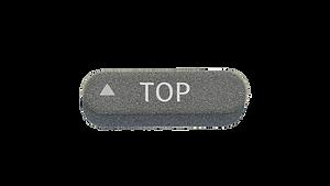 Website TOP button.png