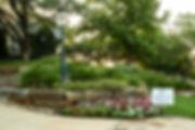 landscape flower.jpg