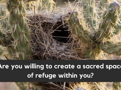 Are you willing to create a sacred space of refuge within you?