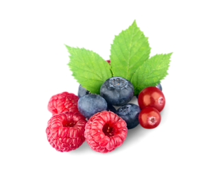 Fruit 2_edited.png