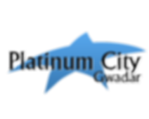Platinum City.png