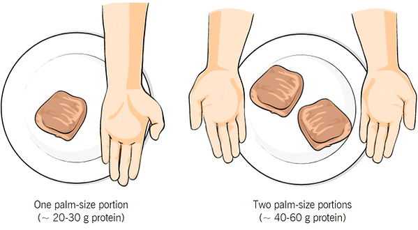 palm-protein-edited.png