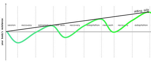recovery-adaptation-graph-web.jpg