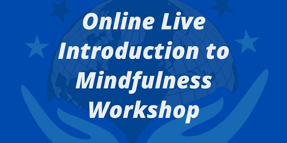 Mindfulness Workshop - Adults