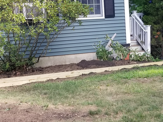 Old damaged lawn and new beds