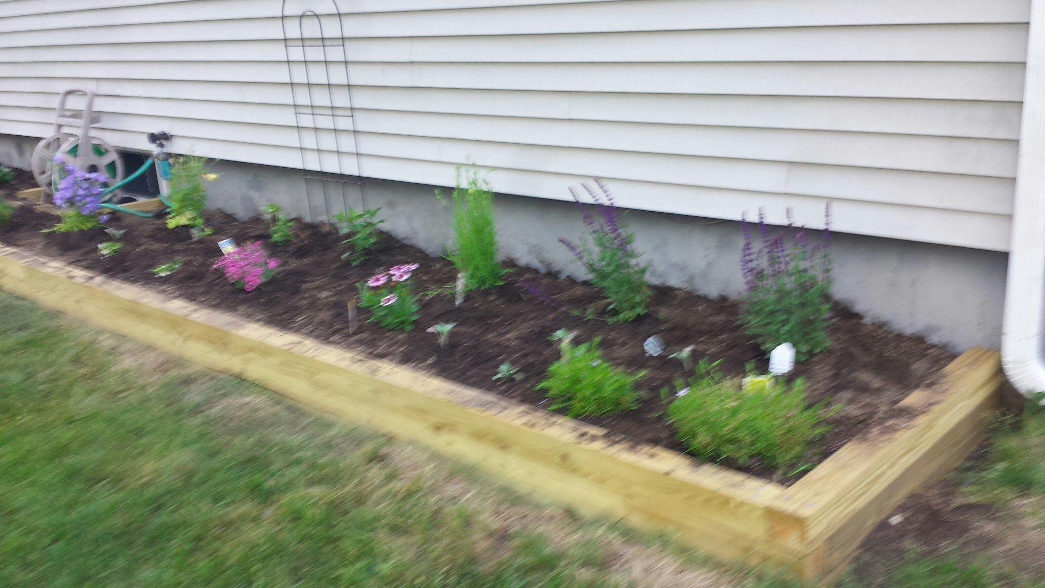 New Flower Garden