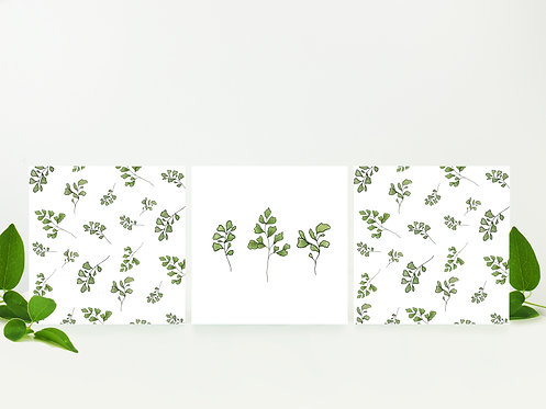 Fern Notecards (3 pack)