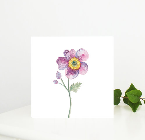 Anemone Pink Card