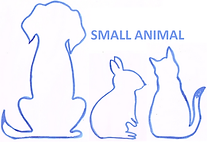 SMALL ANIMAL.png