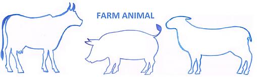 FARM ANIMAL.png