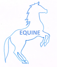 EQUINE.png