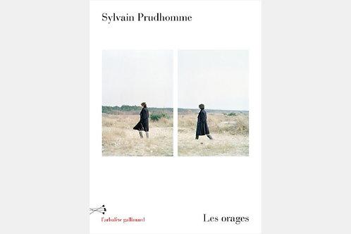 Sylvain PRUDHOMME - Les orages