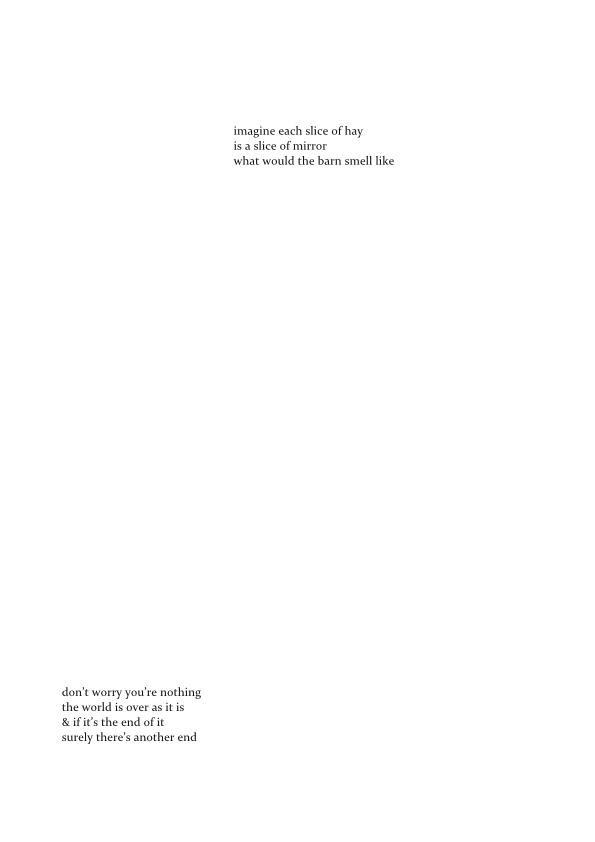 BLISS MANUAL  - Copy (3) - Copy-page004.