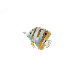 logo poisson papillon.png
