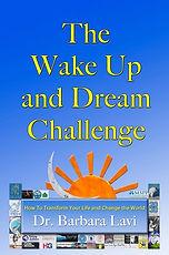 http://www.dreampositioningsystem.com/