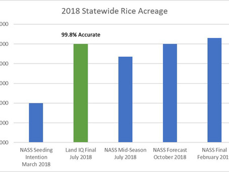 Land IQ In-Season Rice Estimates