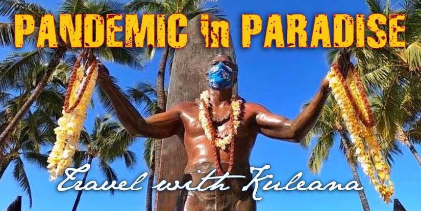 PANDEMIC in PARADISE
