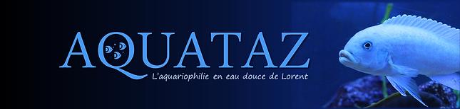 Aquataz (Site Web).png