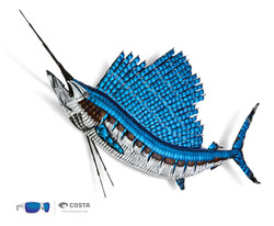 COSTA SUNGLASS FISH