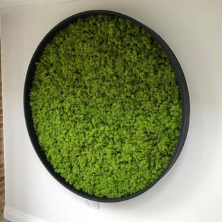 Circular Moss Wall.jpg