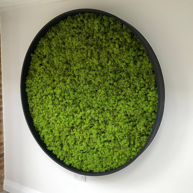 Circular Moss Wall by Arti Green Ltd for East Lancs Hospice